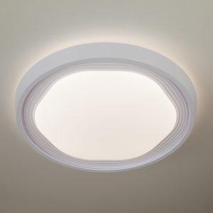 Потолочный светодиодный светильник с ПДУ Elektrostandard 40005/1 LED белый
