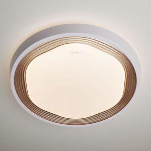 Потолочный светодиодный светильник с ПДУ Elektrostandard 40005/1 LED кофе