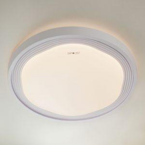 Потолочный светодиодный светильник с ПДУ Elektrostandard 40006/1 LED белый