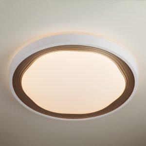 Потолочный светодиодный светильник с ПДУ Elektrostandard 40006/1 LED кофе