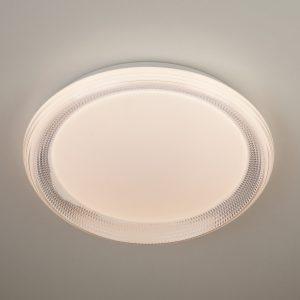 Потолочный светодиодный светильник с ПДУ Elektrostandard 40012/1 LED белый