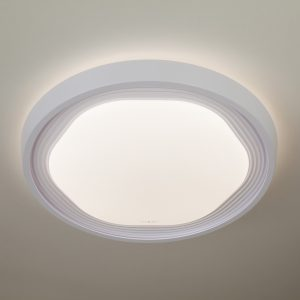 Светодиодный потолочный светильник 40005/1 LED белый