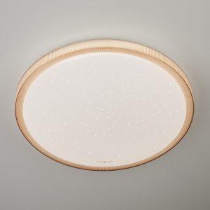 Светодиодный потолочный светильник 40014/1 LED